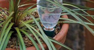 Chai nhựa phế liệu tái chế làm hệ thống tưới nước